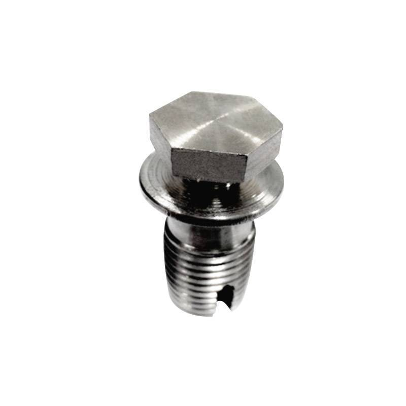 Custom forging parts stainless steel hexagon screw bolt